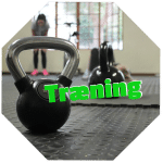 fysioterapeuten tilbyder individuel træning og hold træning for klienter