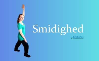 Smidighed